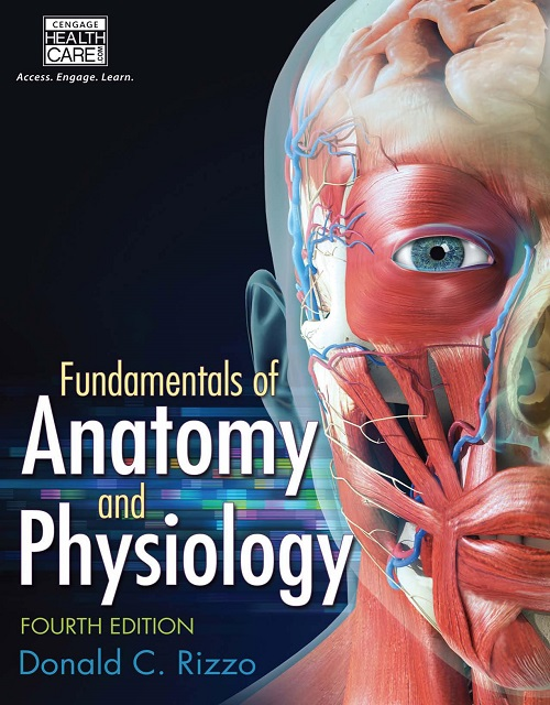 Physiology – Medic Soul